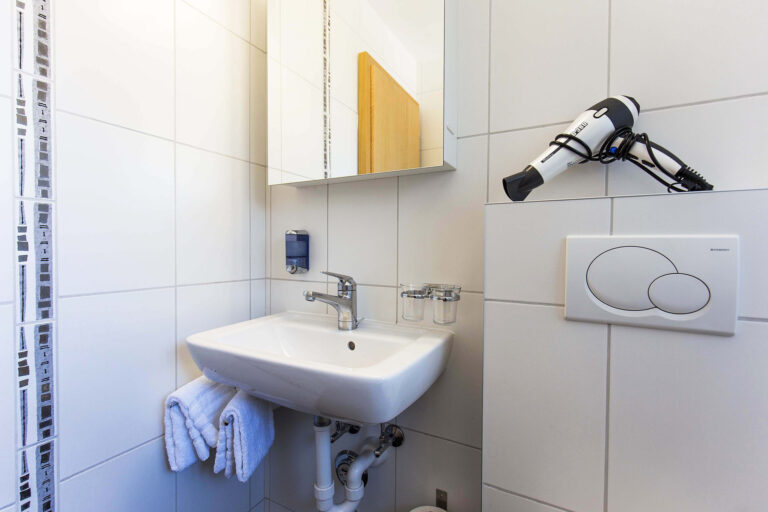 budget_apartments_zermatt_haus_theodul_306_bathroom_011