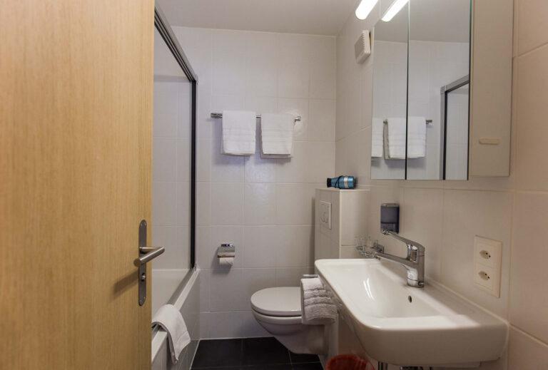 haus_theodul_zermatt_budget_apartments_303_bathroom_010