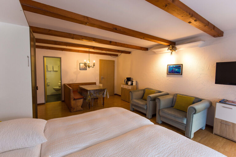 haus_theodul_zermatt_budget_apartments_303_living_012